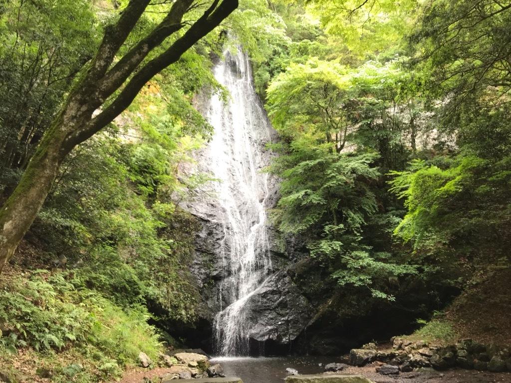 写真提供:京丹波町観光協会事務局