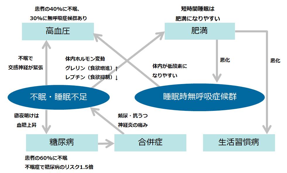図1. 不眠・睡眠不足と生活習慣病の悪循環(※2)